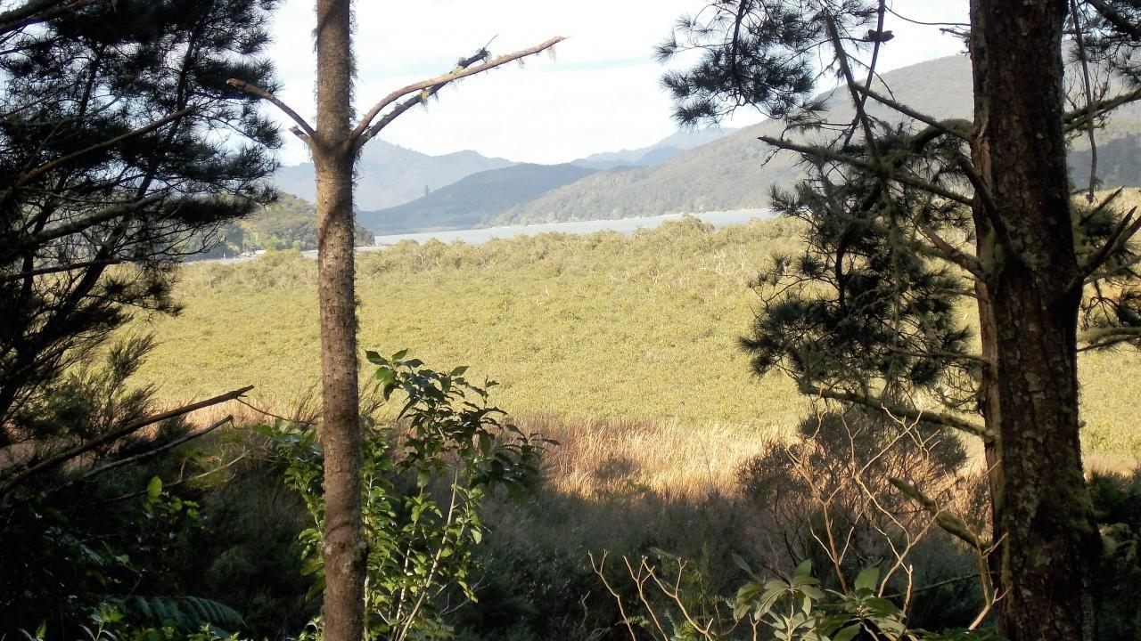Lot 5 75 Lane Road, Russell