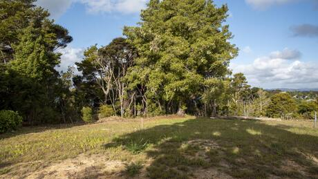 19 Totara Heights Way, Paihia