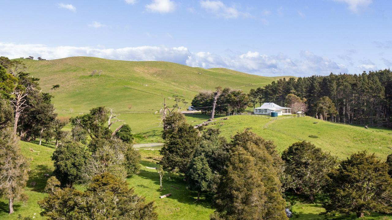 153 Morrison Road, Dargaville Surrounds