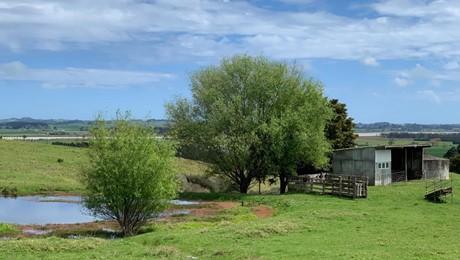 Bradleys Landing East Road, Arapohue
