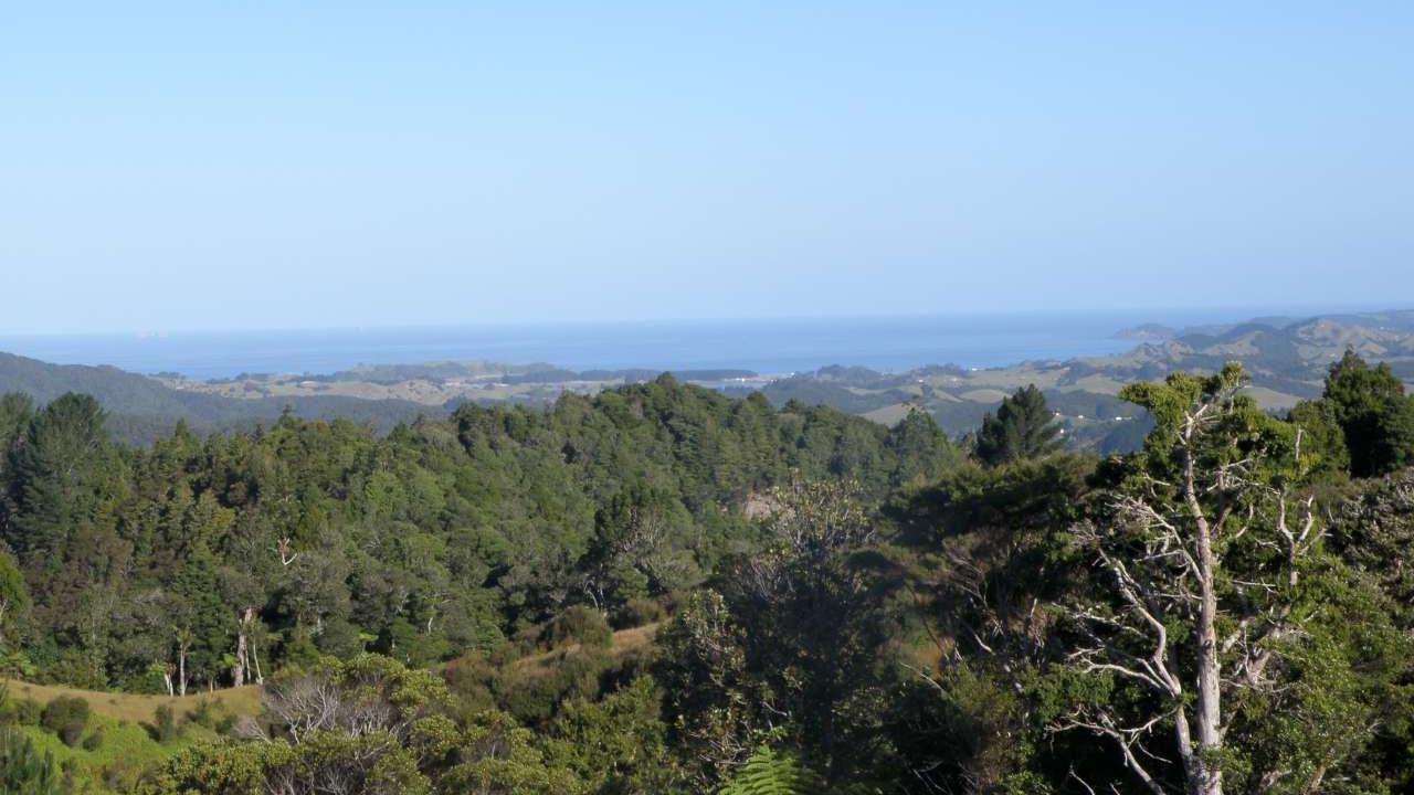 Bridle Track Road, Opuawhanga