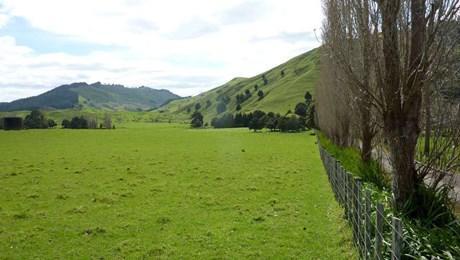 1572 Tangowahine Valley Road, Tangowahine