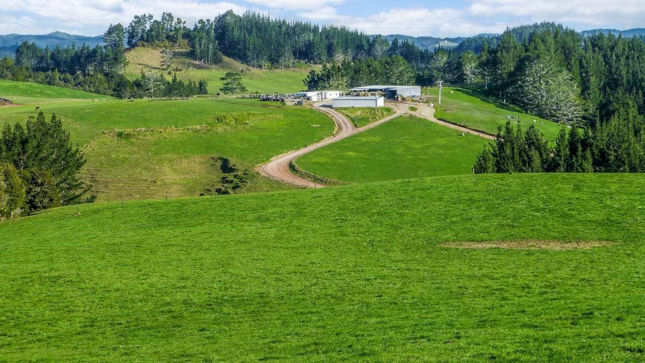 Byles Road, Hikurangi
