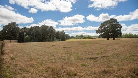 (Lot 1) 1373 Pipiwai Road, Ruatangata West