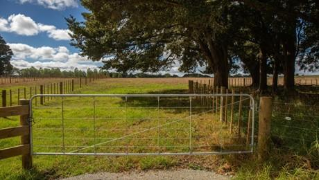 (Lot 2) 1373 Pipiwai Road, Ruatangata West