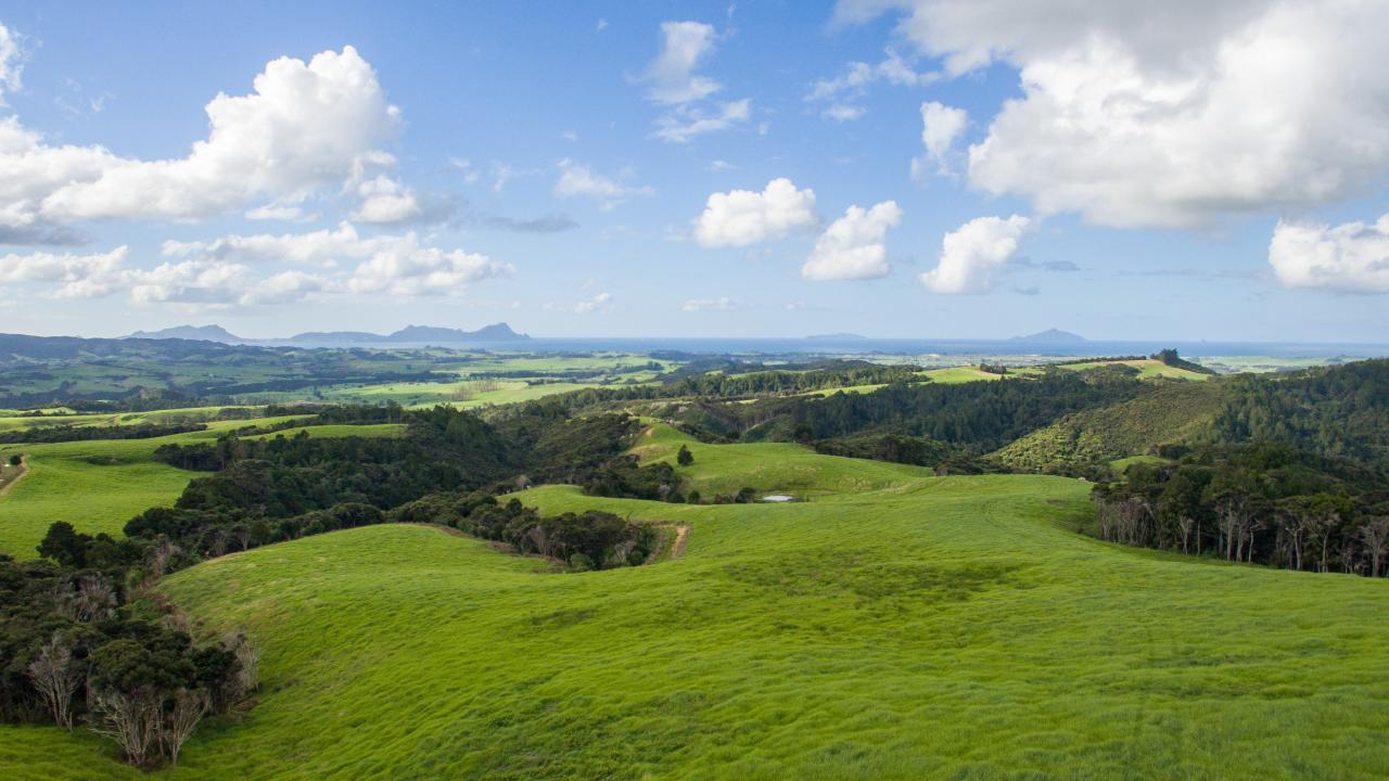 Lot 2 & 5  Walters Road, Waipu