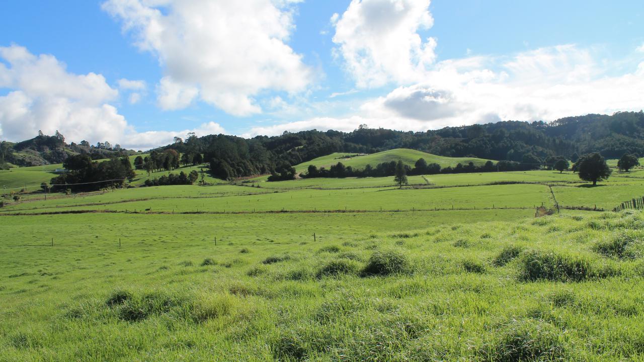 0 Jubilee Road, Opuawhanga