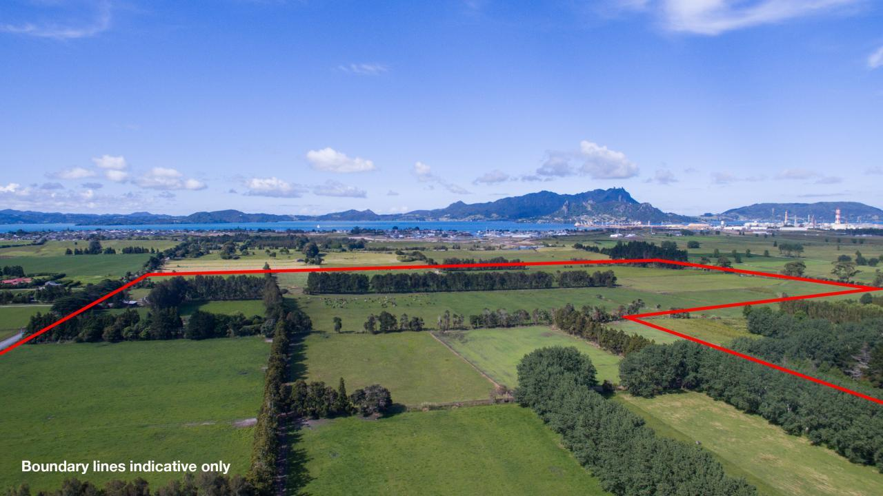213 Pyle Road, One Tree Point