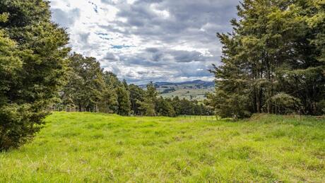 Lot 4  Gibbs Road, Whakapara