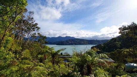 908 Kenepuru Road, Kenepuru Sound