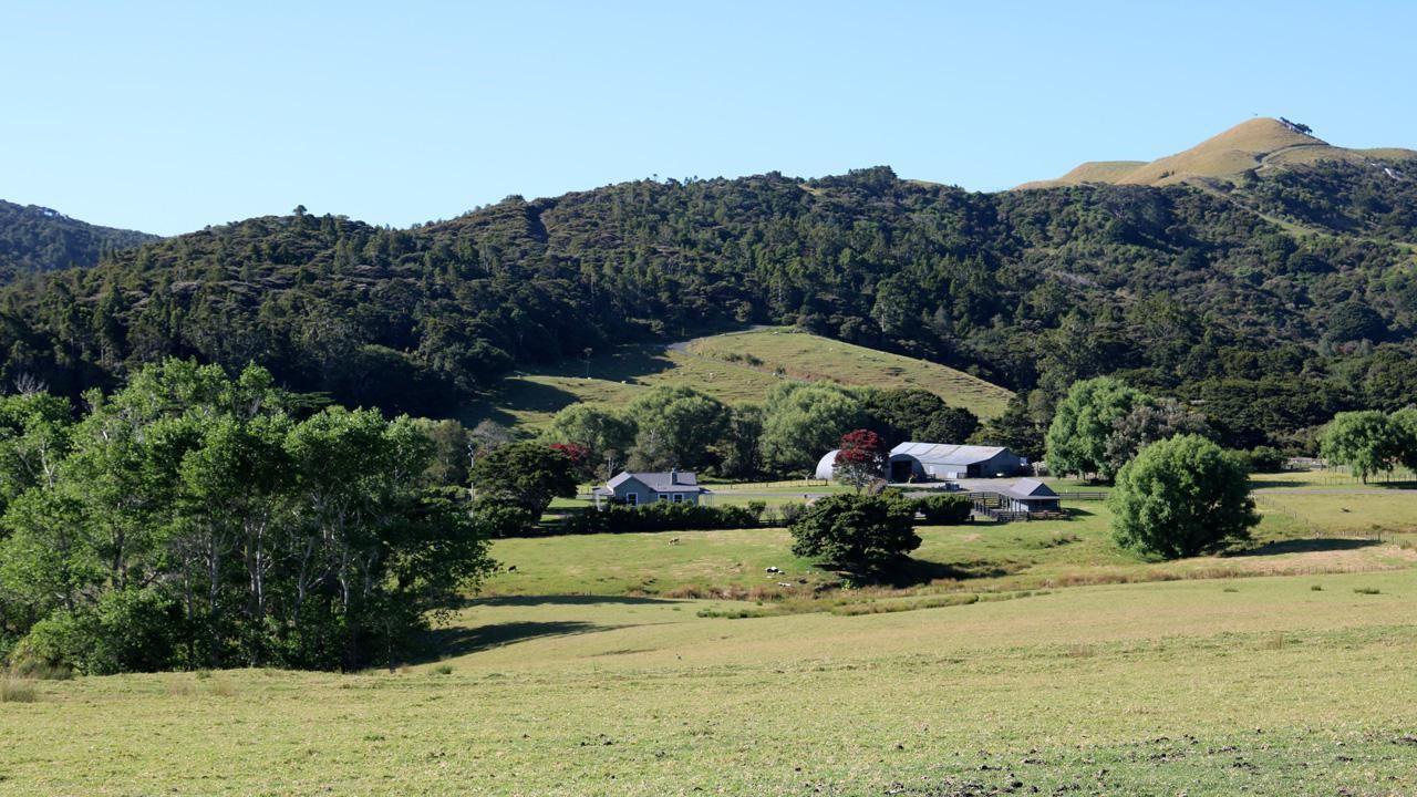 1825 (Lot 42) Breamtail, Mangawhai Heads