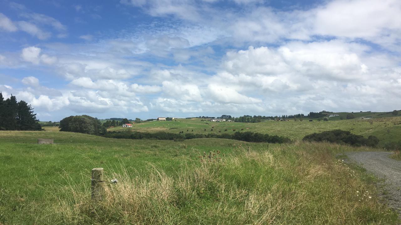 Lot 23 Settlement Road, Mangawhai