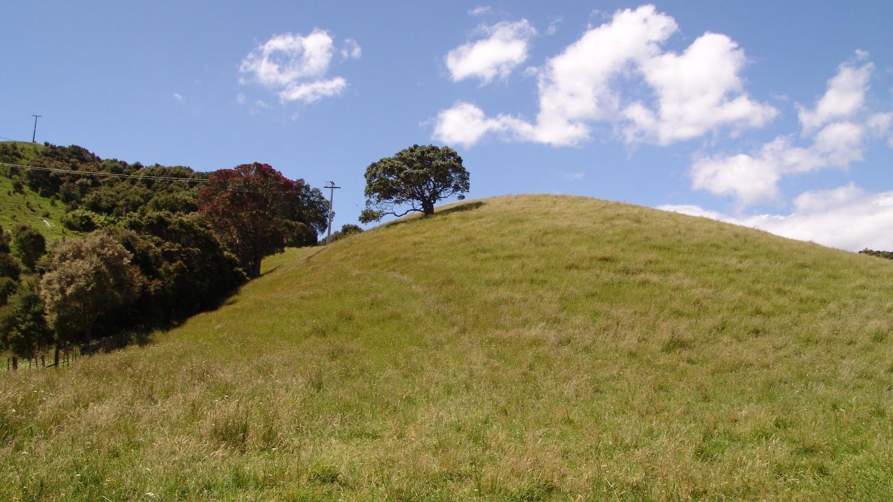 1780 Cove Road, Mangawhai Heads