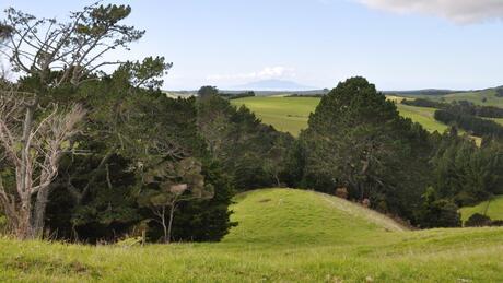 Lot 5 Cemetery Road, Te Arai