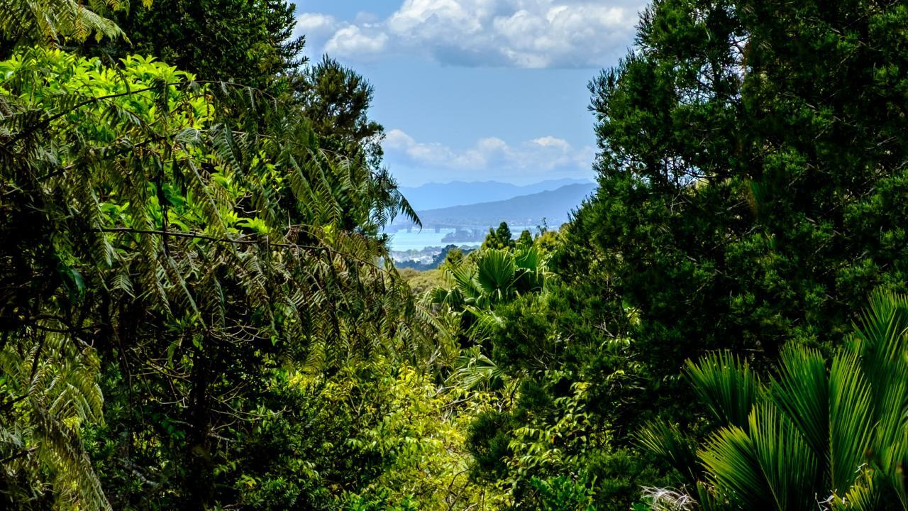 118 Opanuku Road, Henderson Valley