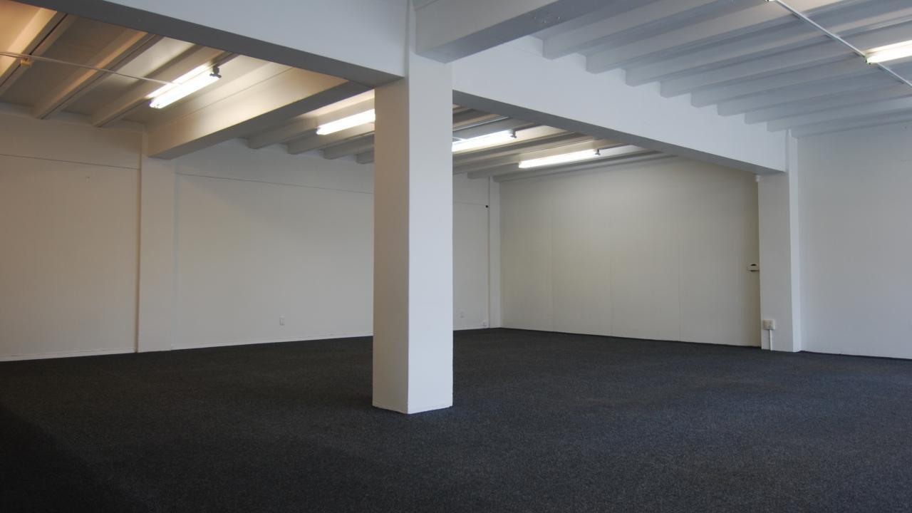 Showroom/111 Newton Road, Eden Terrace