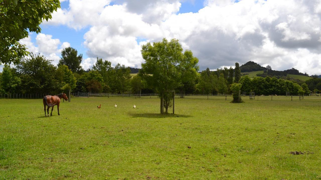 Lot 9 33 Omaha Flats Road, Matakana