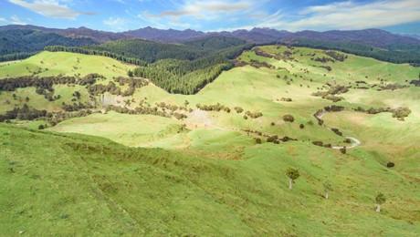 134 Lagoon Hill Road, Tuturumuri
