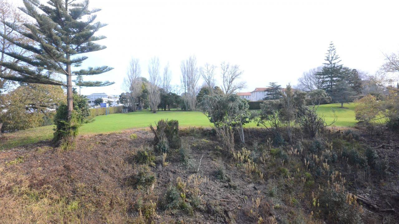43 College Hill, Freemans Bay