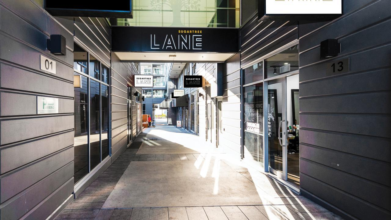 P1 Sugartree Lane, Auckland Central