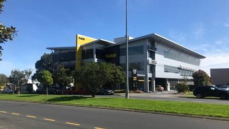 17 Ronwood Avenue, Manukau City