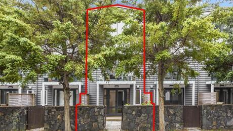 8 Sudbury Terrace, Parnell