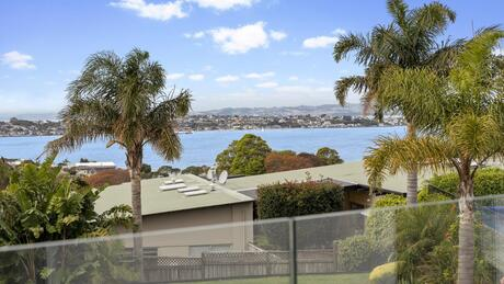 165 and 1/165 Riddell Road, Glendowie