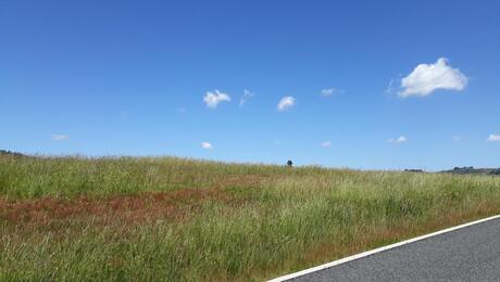 18 Crickett Lane, Pokeno