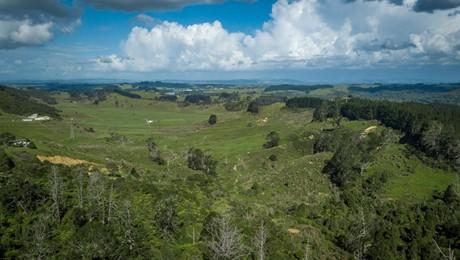 89 Trig Road, Tuakau