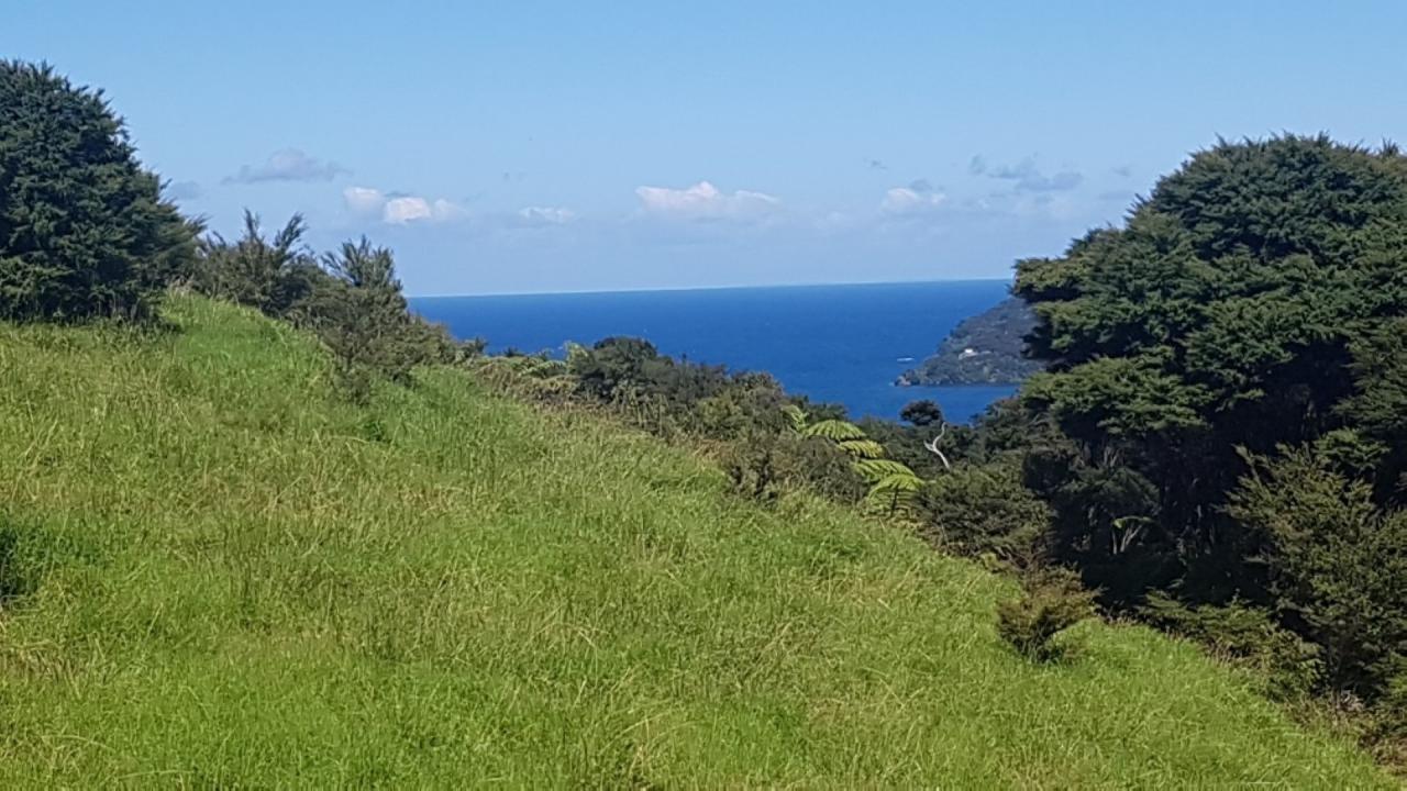 Lot 2 Station Rock Road, Great Barrier Island (Aotea Island)