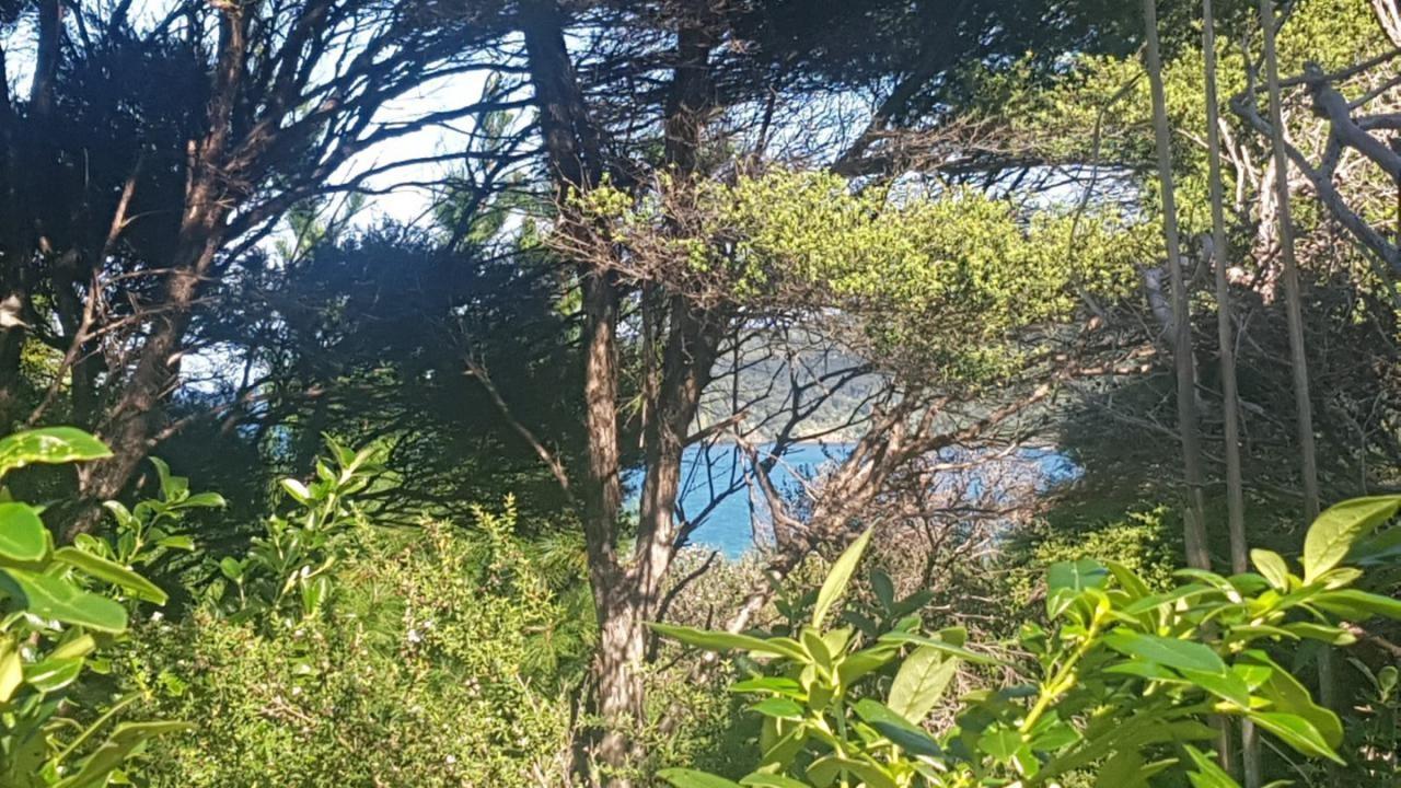 60 Blackwell Drive, Great Barrier Island (Aotea Island)