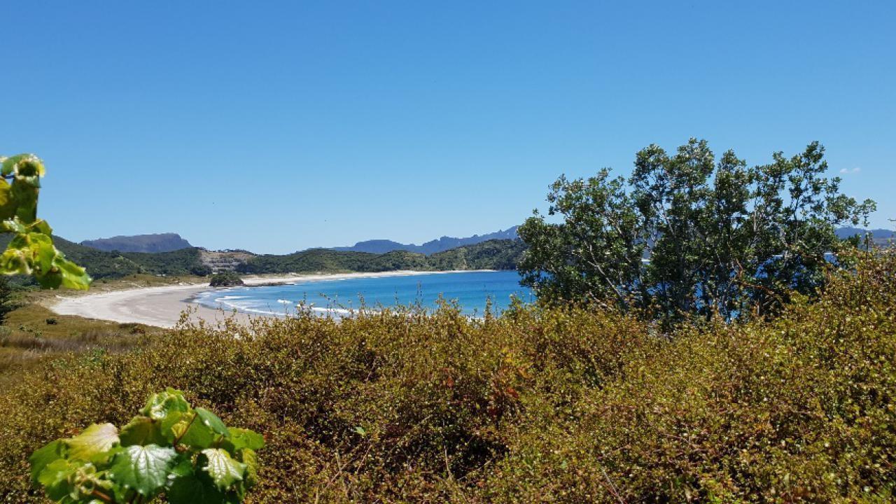 7 Sandhills Road, Great Barrier Island (Aotea Island)