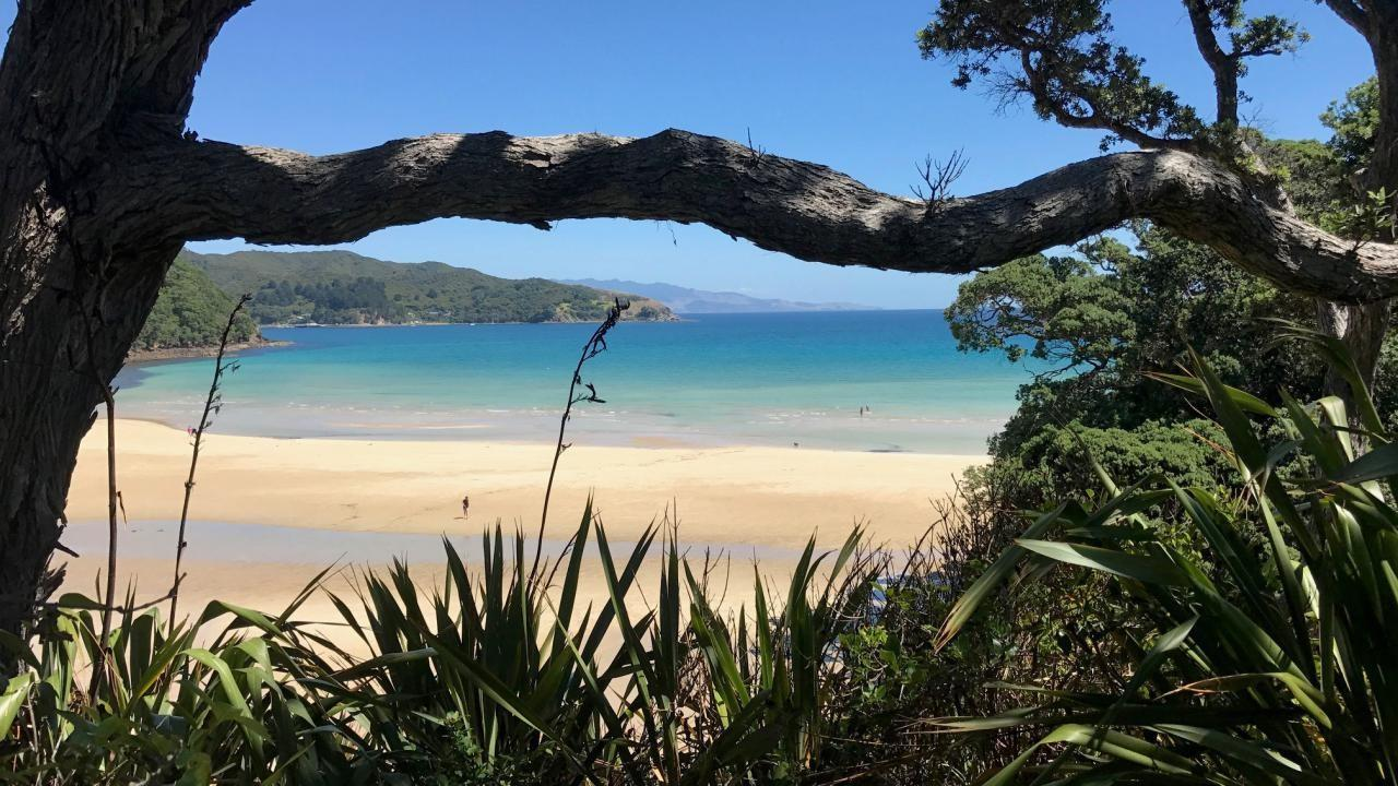 456 Shoal Bay Road, Great Barrier Island (Aotea Island)