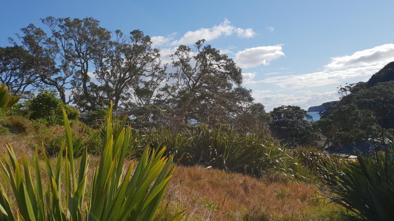 12 Mulberry Grove Road, Great Barrier Island (Aotea Island)
