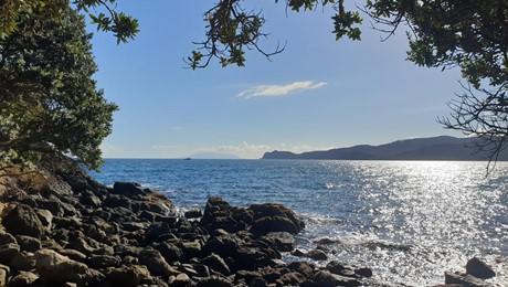 Lot 4 DP 70254 Ross Bay, Great Barrier Island (Aotea Island)
