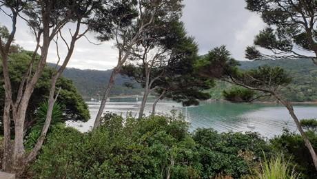 767 Whangaparapara Road, Great Barrier Island (Aotea Island)