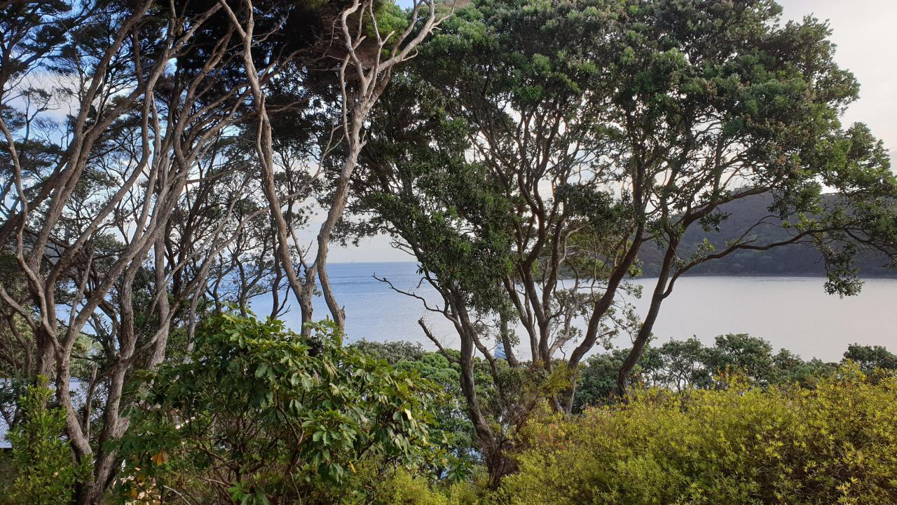 781 Whangaparapara Road, Great Barrier Island
