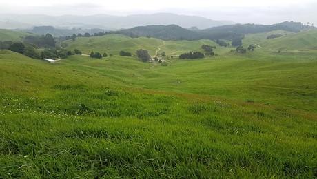 2261 Te Kopia Road, Ngakuru, Rotorua