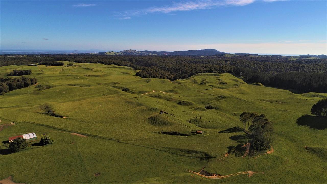 Pyes Pa Road, Tauranga