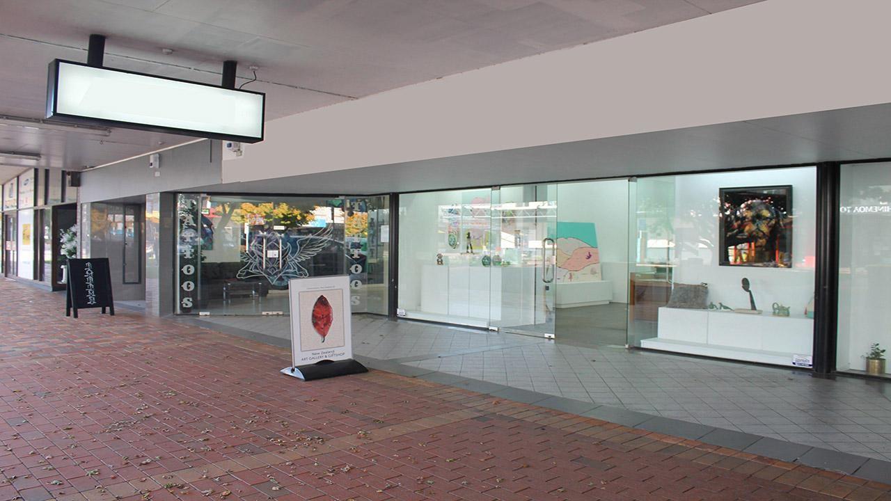 1155 Hinemoa Street, Rotorua Central