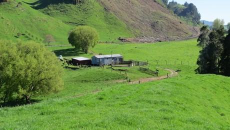 235 Poutakataka Road, Ngakuru