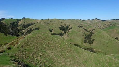 630 Otorohaea Trig Road, Ngaruawahia