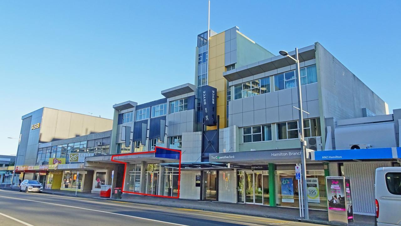 36 Bryce Street, Hamilton Central