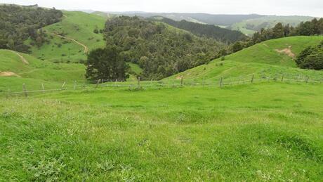634 Otorohaea Trig Road, Ngaruawahia