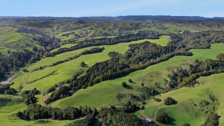 Lot 1 166 Waikaretu Valley Road, Onewhero