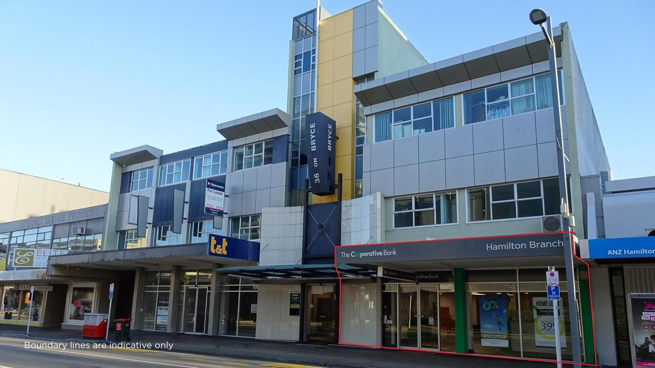 36 Bryce Street Central, Hamilton Central