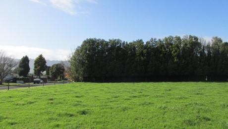 13 Temm Road, Te Poi, Matamata-Piako Surrounds