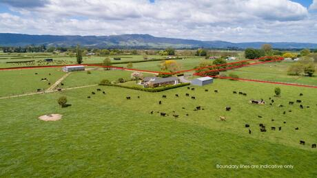 121 Tower Road, Matamata