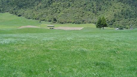 658 Te Kopia Road, Waikite Valley
