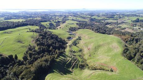 Tim Road, Whakamarama